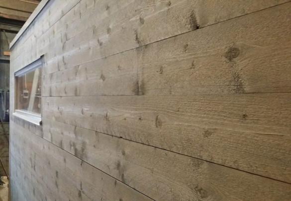 Träet till husstommen